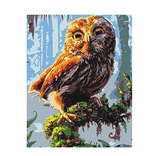 MonkeyJack 40x50cm Frameless DIY Painting By Numbers Canvas Oil Painting Wall Hanging Art Picture - Assorted - Owl, 40x50cm