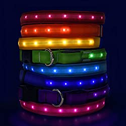 Hot Dog Safety Collar - Large - Royal Blue - US Made LED LIght Up Collar With Rechargeable Battery