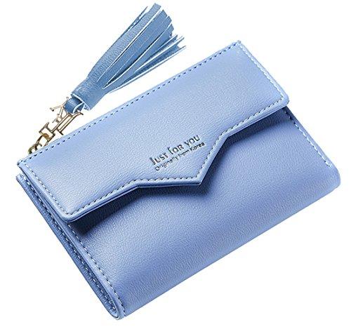 FEMAROLY Women Wallet Soft Leather Designer Bifold Multi Card Organizer Lady Clutch for Lady and Girls - Accordian Clutch