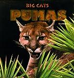 Pumas, Jon Middleton, 0823952118