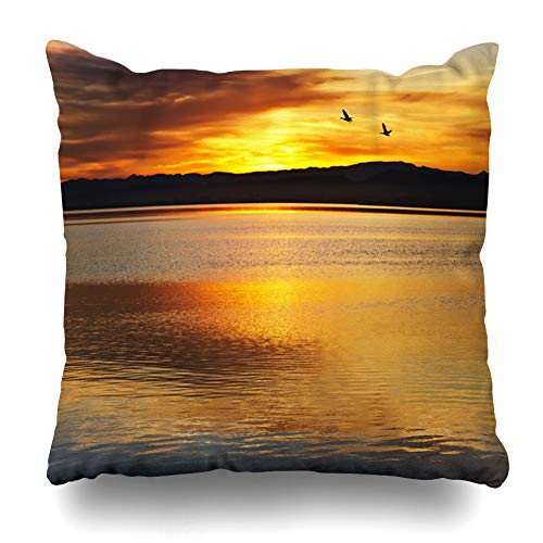 (Ahawoso Throw Pillow Cover Blue River Birds Between Colors Sunset Hatchery Nature Lake Puesta Beach Breeding Design Zippered Pillowcase Square Size 16x16 Inches Home Decor Pillow Case)