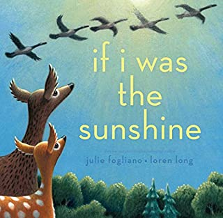 Book Cover: If I Was the Sunshine