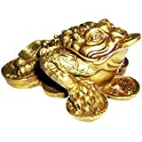 Feng Shui Money Frog /Money Toad Attract Wealth