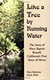 Like a Tree by Running Water, Mary Katherine Doyle, 1577331494