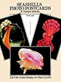 Seashells Photo Postcards, R. Tucker Abbott, 0486262839