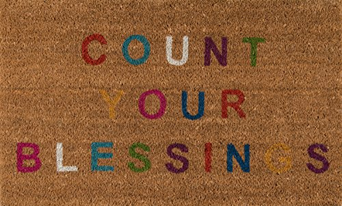 Novogratz Aloha Collection Count Your Blessings Doormat, Multi, 16 x 26, Multicolor