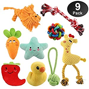 Dog Toys for Small Dogs & Puppies – 100% Natural Cotton Rope Teething Toys – Squeak Toys – Dog Balls – Plush Dog Toy… Click on image for further info.