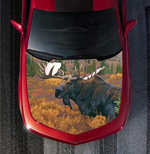 Moose Exhaust Wrap - 3