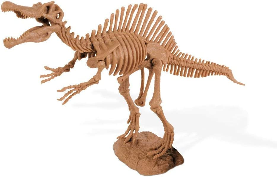 deqube Trading S.L. cl1668/K Geoworld/ /Spinosaurus Skeleton Figure