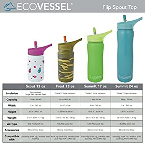 Eco Vessel Summit Discontinued 2014 Insulated Stainless Steel Water Bottle with Flip Straw (17-Ounce, Silver Express)
