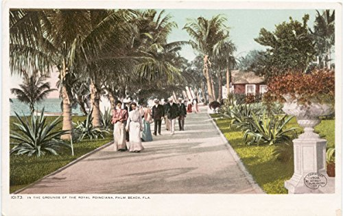 Historic Pictoric Postcard Print | In the Grounds, Royal Poinciana, Palm Beach, Fla, 1898 | Vintage Fine Art