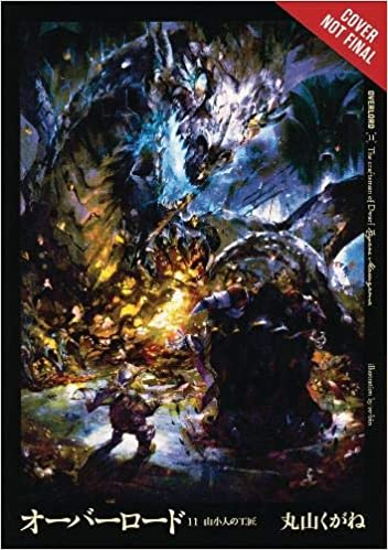 Amazon com: Overlord, Vol  11 (light novel) (9780316445016