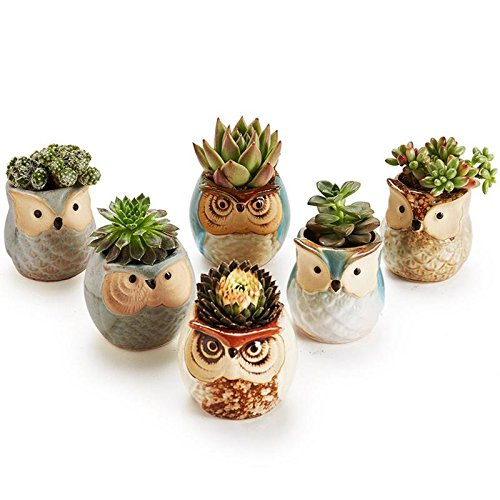 VHLL LanLan 6pcs Ceramic Owl Plant Pot Flowing Glaze Base Creative Flower Container as Decorations New by VHLL