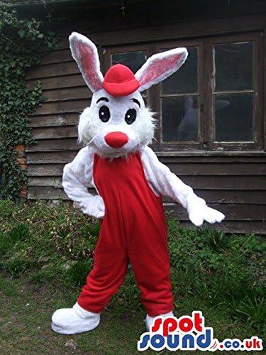 Roger Rabbit Cartoon nos SpotSound mascota disfraz con mono de ...