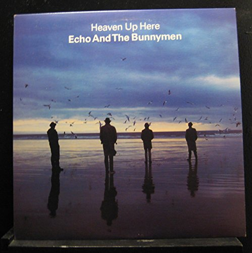 echo and the bunnymen ocean rain - 6
