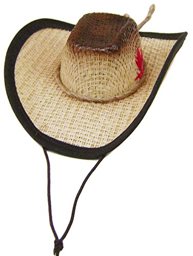 Modestone Straw Pet Cowboy Hat Elastic String Feather Brown