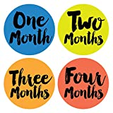 Little Poet Monthly Stickers - Gender Neutral - Months 1-12