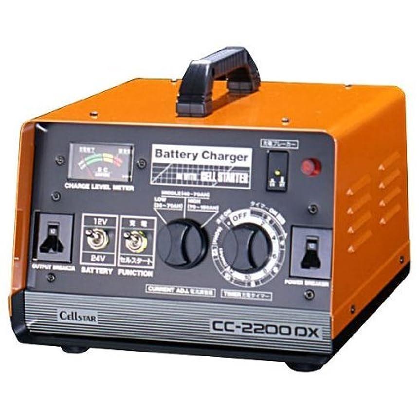 おばさんより平らな全体Xtreme charger 12V 2.5A 充電器 XC-100P 【並行輸入品】