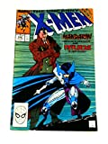 img - for The Uncanny X-Men: Days of Future Past book / textbook / text book