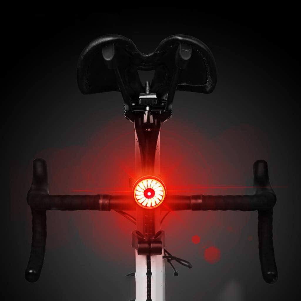ZGF MTB Feux arrière, Feux Stop, Feux de vélo de Signal de Retour, Le Voyant USB Smart, la sécurité de Conduite lumière Nuit,Argent Titanium