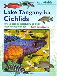 Lake Tanganyika Cichlid Aquarium (Complete Pet Owner's
