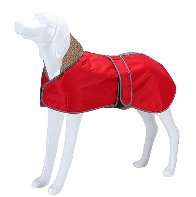 Morezi Abrigo para Perro Impermeable, Abrigo de Invierno para ...