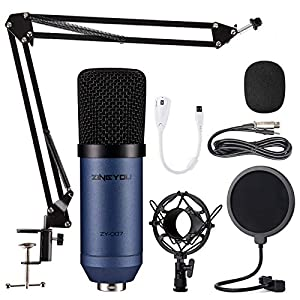 Condenser Microphone ZINGYOU Computer Mic ZY-...