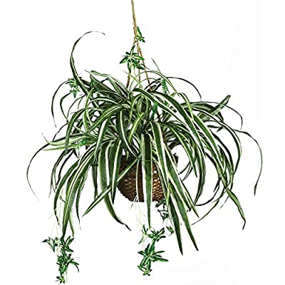 Nearly Natural Spider Hanging Silk Plant