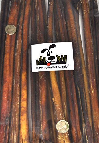 12'' BULLY STICKS - Regular Select Thick - Dog Chew Treats, 12 inch (48 Pack), by Downtown Pet Supply by Downtown Pet Supply