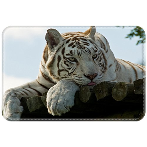 Tigers Small Football Rug (HommomH Rug Mat Doormat 1.6 ft x 2.6 ft = 4.1 square ftWaterproof Plush Living Room Bedroom Kitchen Indoor Outdoor Wood Tiger Rest White)