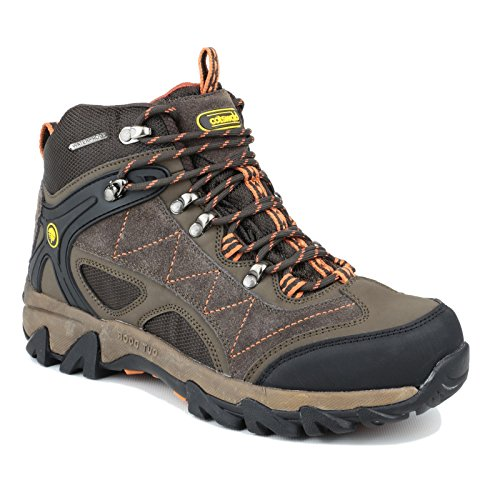 Cotswold Womens/Ladies Malvern Waterproof Lace up Hiking Boots Marrón - marrón