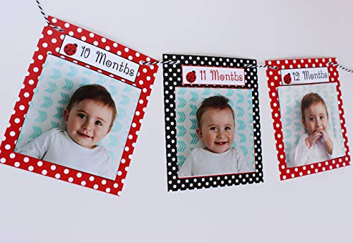 Ladybug First Birthday Monthly Photo banner, Fits photos 4x4, First year photo banner, New born - 12 months -