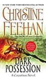 Dark Possession (Carpathian Novel, A)