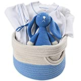 Organic Baby Blue Gift Basket - Blue Bunny Layette in Cotton Tote