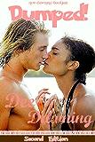 DUMPED! [Interracial, BWWM] (Letta Storm Book 1)