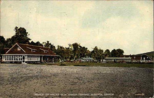 prince-of-wales-ep-ranch-pekisko-alberta-canada-original-vintage-postcard