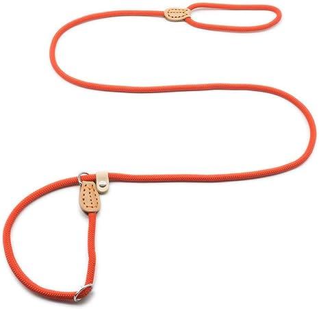 XYBB Correa Perro Slip Collar Mascota Caminando Nylon ...