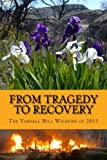 From Tragedy to Recovery 1--B&W: The Yarnell Hill Wildfire of 2013