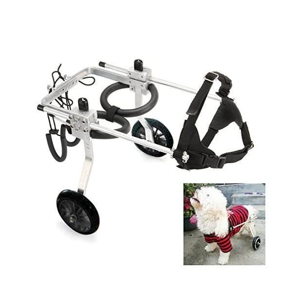 Anmas Sport Adjustable Dog Pet Wheelchair, Hind legs Rehabilitation (L-Hip Height: 13″-16″, Weight:20-40lbs) Click on image for further info.