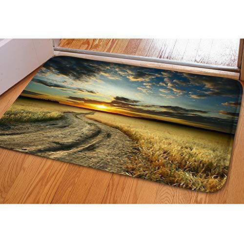 (iBathRugs Door Mat Indoor Area Rugs Living Room Carpets Home Decor Rug Bedroom Floor Mats,Road Field ripe Yellow Wheat)