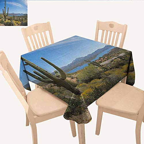 longbuyer Saguaro Tassel Tablecloth Big Cactus on The Valley Over Bartlett Lake in Desert Shallow Root Nature Image Small Tablecloth Blue Green W 60