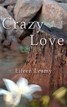 Crazy Love by [Leamy, Eileen]