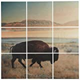 9-Piece Southwest Bison Mural on Wood, 36'' x 36''