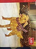 4 ft LED Golden Retriever Christmas Decor