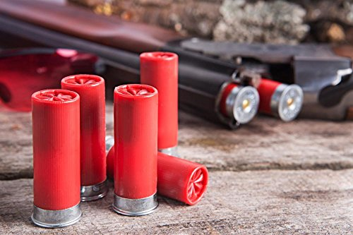 Wallmonkeys WM366881 12 Gauge Shotgun Shells with Shotgun on Wood Surface Peel and Stick Wall Decals (24 in W x 16 in H)
