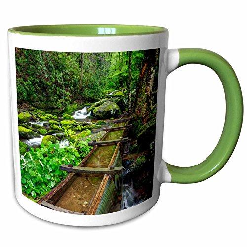 3dRose Danita Delimont - Mills - Tub Mill, Great Smoky Mountains, Tennessee, USA - US43 BJY0012 - Jaynes Gallery - 11oz Two-Tone Green Mug (mug_146560_7) Tennessee Beverage Tub