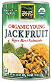 Native Forest Organic Vegan Meat Substitute, Young Jackfruit, 14 Ounce (Pack of 12)
