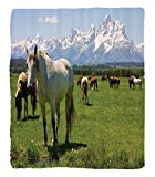 Chaoran 1 Fleece Blanket on Amazon Super Silky Soft All Season Super Plush National Parks Home Decor Equestrian Decornow Idyllic Mountain Peaks Arabian Horse Art Prints Fabric