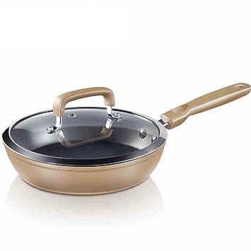 WTL Sartén Bandeja antiadherente plana 26 / 28cm sin aceite Freidoras Cocina de inducción (Tamaño : 26cm) : Amazon.es: Hogar