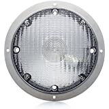 Lumitronics Surface Mount Porch Scare Light w/Mounting Gasket - Featuring Stainless Steel Silver Base